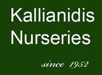 kallianidis_nurseries_greece_logo_web